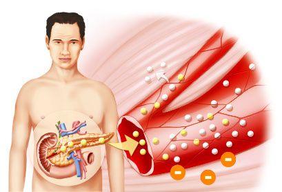 El masaje acelera el metabolismo del cuerpo, afectando de forma activa cada célula. Como resultado, proporciona una mayor operación de todos los sistemas de órganos y mejora la eficiencia y funcionalidad del conjunto. Durante la ejecución de las maniobras de masaje, se activan minerales y proteínas, mientras que el aumento de la excreción de orina, a su vez contribuye a la eliminación de las sales del organismo como el nitrógeno mineral, cloruro de sodio, fósforo inorgánico,...