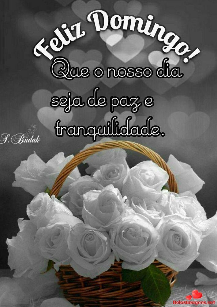Imagens Lindas Baixar Feliz Domingo Facebook Grupo Whatsapp
