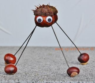En ny kastanjeedderkop fra min blog: http://agnesingersen.dk/blog/edderkop14 - Easy kids crafts chestnut - Kinderbastelideen Kastanien