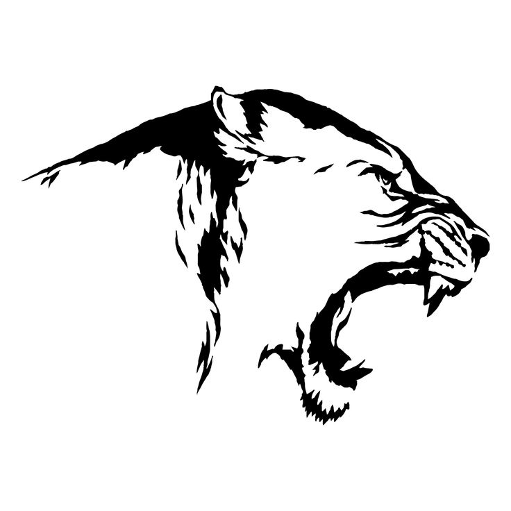 Lion 6 Leopard Jaguar Wild Cat Spots Wildlife Wild Animal Zoo Etsy Animals Wild Lion Illustration Wild Cats
