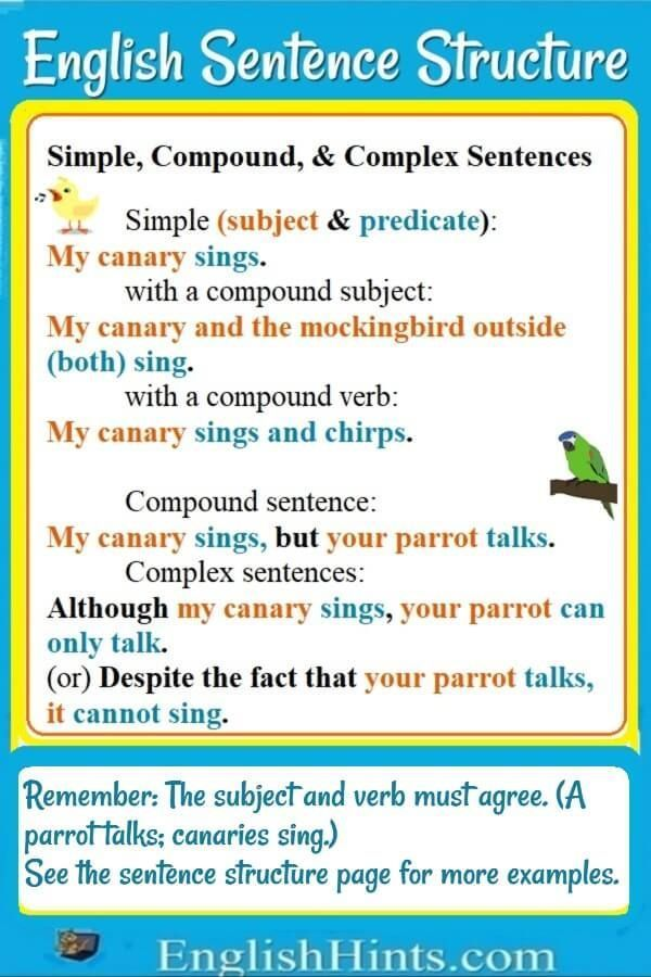 English Sentence Structure English Sentences English Sentence