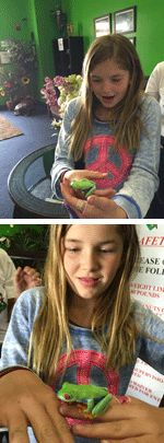 Froggs Bounce House, Fountain Valley Frog Surprise