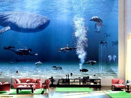 The aquarium inside Bill Gate's house.  I would definitely live here.  How peaceful.
