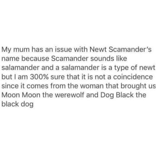 From the author who brought you the boy with a boring name literally just to prove that people with boring names can have adventures, his son named after a manipulator and a verbal abuser, Dog Black the Black Dog and Werewolf McWerewolf, is a new hero: Newt Salamander and his pet Thunderbird Frank.