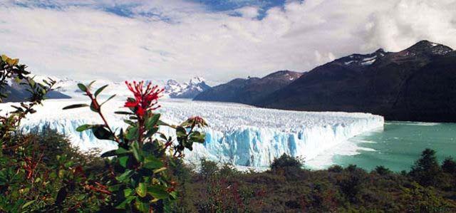 MEMORYWEBSITE: Pervitin -  Drogový příběh a Květy v Patagonii