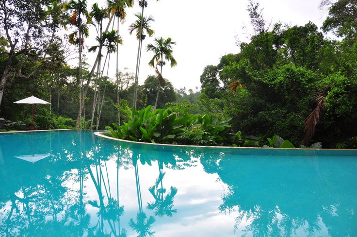 10 Best Jetwing Vil Uyana Hotel Images On Pinterest Indoor Pools Indoor Swimming Pools And