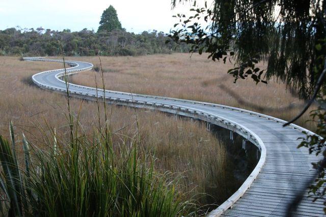 Okarito Trig & 3 Mile Lagoon Walk