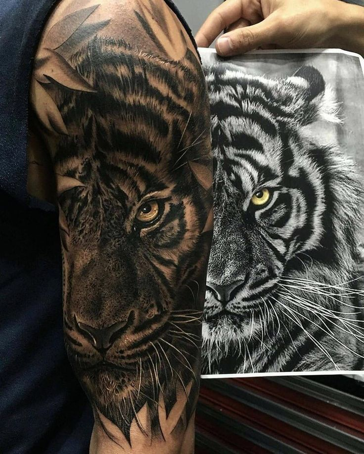 David Hoang On Instagram Back To Back Tiger Tattoo: 25+ Best Ideas About Irezumi Tattoos On Pinterest