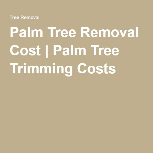 Palm Tree Removal Cost | Palm Tree Trimming Costs