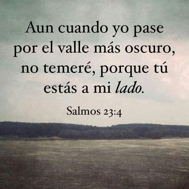 Salmo 23:4 Aunque ande en valle de sombra de muerte, No temeré mal alguno, porque tú estarás conmigo;Tu vara y tu cayado me infundirán aliento