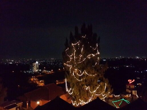 the valley bistro bandung