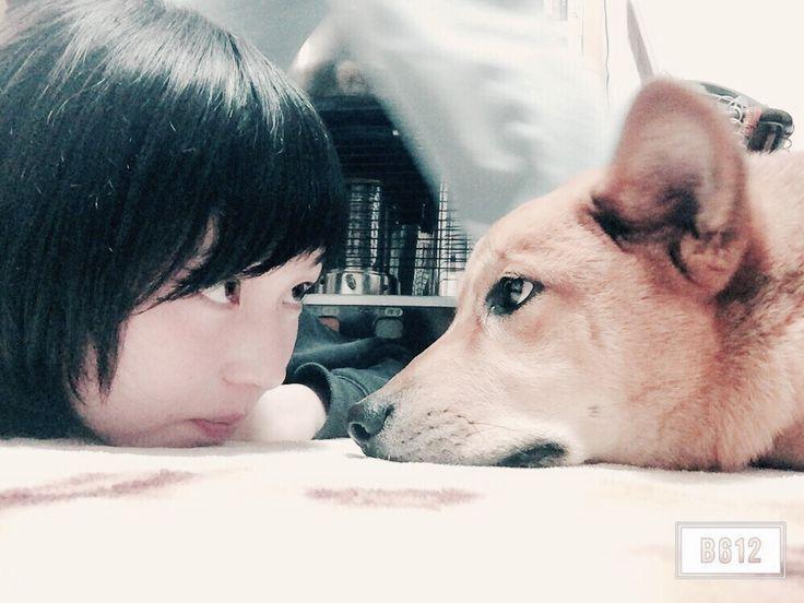 AOI&PINO