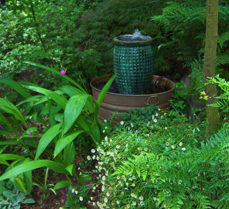 1000 Images About Garden Woodland Area On Pinterest