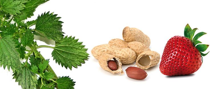 Profil litewski to test alergiczny, który składa się 36 alergenów. Służy do diagnostyki z krwi zarówno alergii pokarmowych jak i alergii wziewnych. W jego skład wchodzi 18 alergenów wziewnych i 18 alergenów pokarmowych.