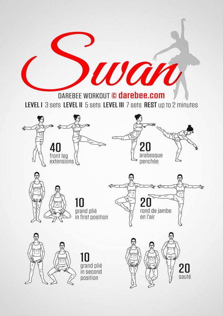 "Ballet ""Swan"" Workout  Not for beginners like me"