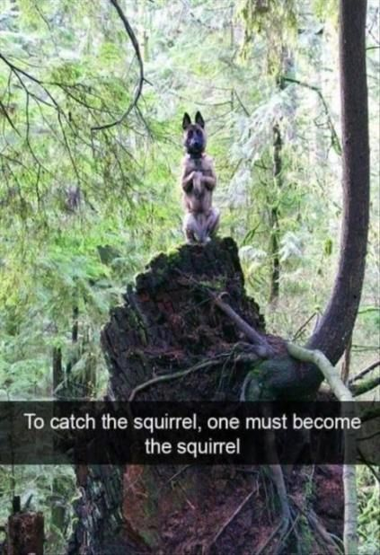 66 Ideas Funny Pictures Friends So Cute For 2019