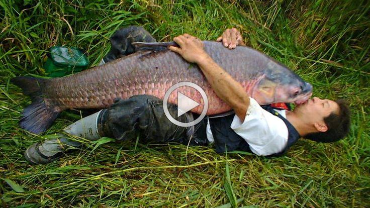 Вот она рыба моей мечты Рыбалка жесть смотреть видео Язь прикол Best Fis...