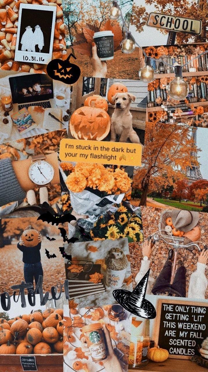 Lockscreens Autumn Lockscreens Like And Or Reblog If You Cute Fall Wallpaper Halloween Wallpaper Iphone October Wallpaper