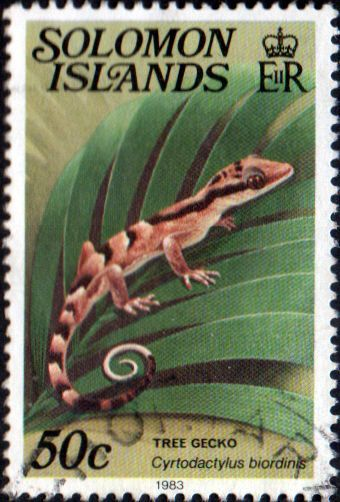 1979 Solomon Islands Reptiles SG 400CB Fine Used SG 400CB Scott 409A Imprint 1983 Other British Commonwealth Empire and Colonial stamps Here