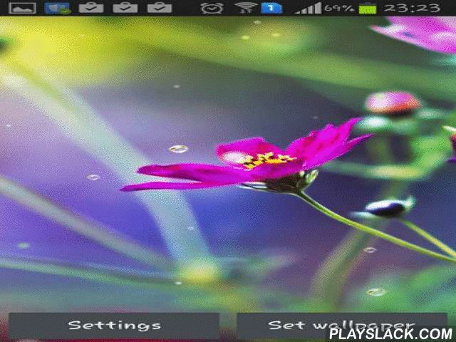 Funny Rain  Android App - playslack.com , Funny rain - tender blooms under brushed rain will become an actual embellishment for the screen of your smartphone or tablet. Live wallpapers will surely cause grin and give you superb feeling for the whole day.
