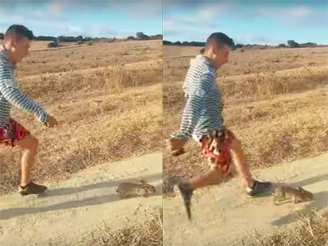 "Internet se une para cazar al joven que pateó un conejo al grito de ""Cristiano Ronaldo"" http://www.playgroundmag.net/noticias/actualidad/Forocoches-conejo-grito-Cristiano-Ronaldo_0_2012798738.html?utm_source=facebook.com&utm_medium=post&utm_campaign=original&utm_term=madre"