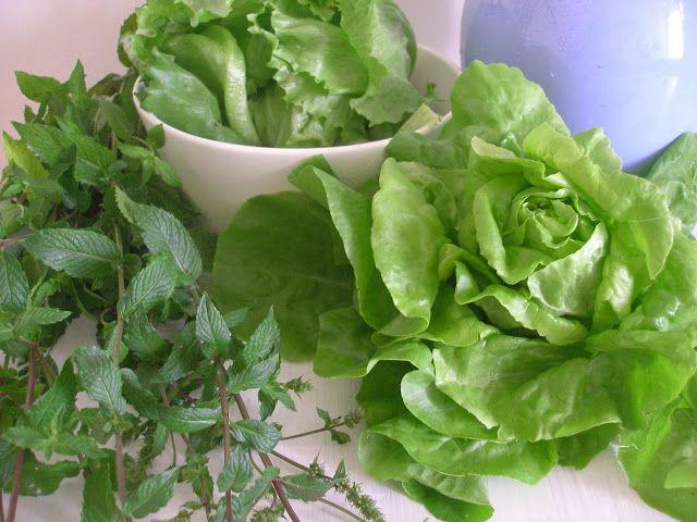 Polévka v salátovém vydání - co se salátem, když už nevíte co s ním