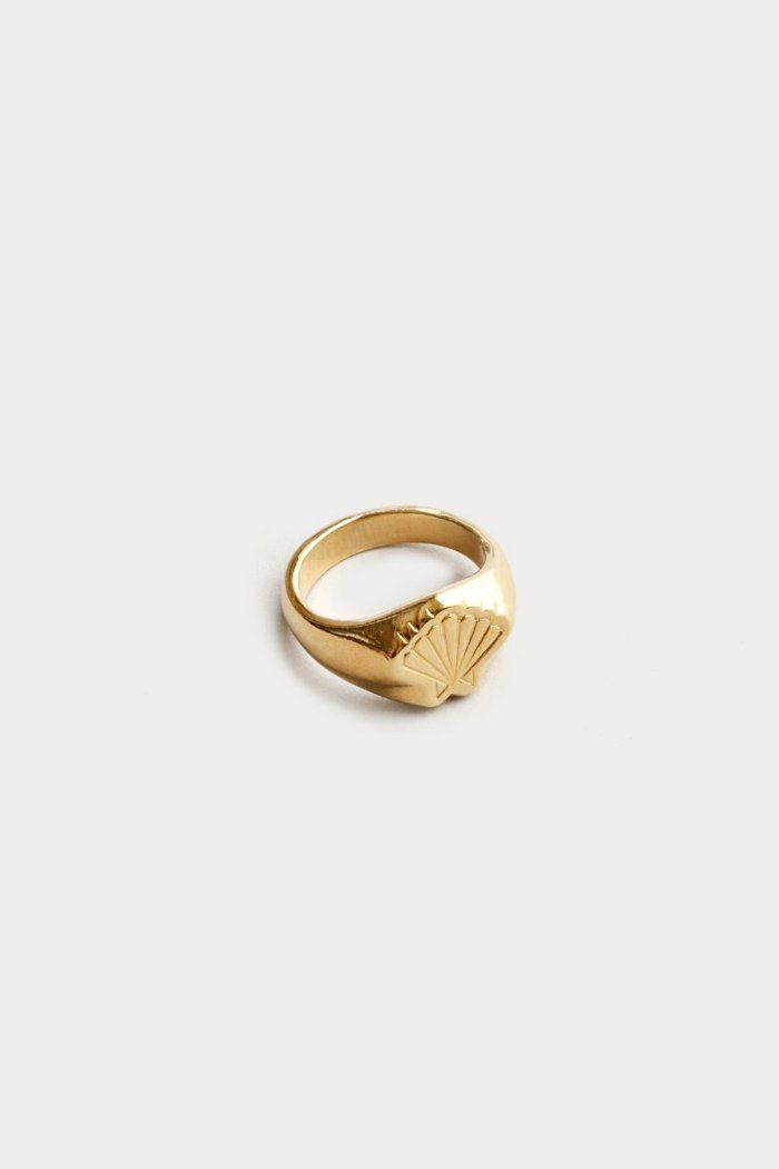 f2b4853bb Wolf Circus gold Marcel shell signet ring handmade modern jewelry | pipe  and row dainty, timeless, quality, slow fashion, ethical, 14k gold ring, ...