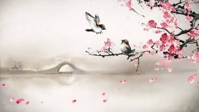 cherry blossom wallpaper - Buscar con Google