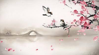 cherry blossom wallpaper - Buscar con Google