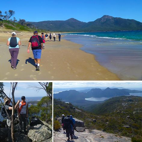 The Freycinet walk along the Peninsula Circuit of the National Park is ranked as one of Tasmania's 5 Great Bushwalks.