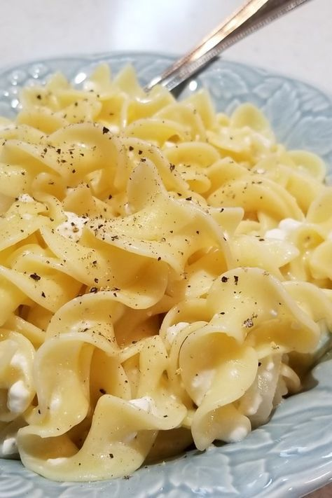 """Polish Noodles (Cottage Cheese and Noodles) 
