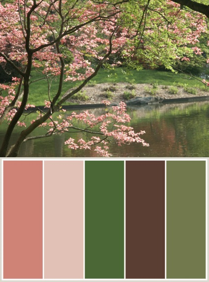 Color Themes: Cherry Blossoms -- Missouri Botanical Gardens