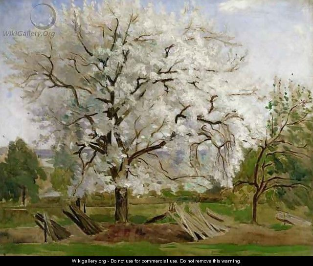 Apple Tree in Blossom - Carl Fredrik Hill