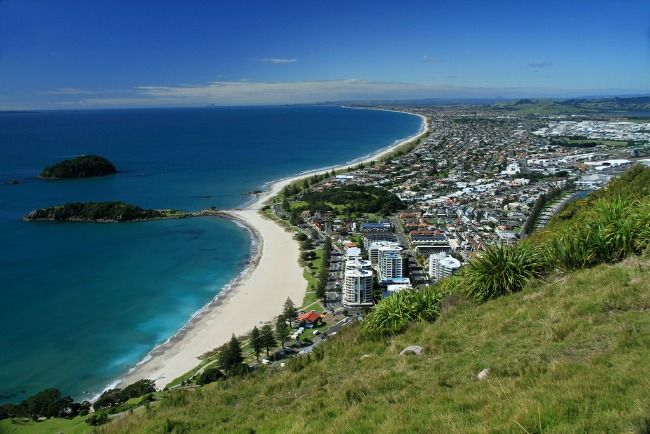 5 Must Do's to Explore Tauranga New Zealand