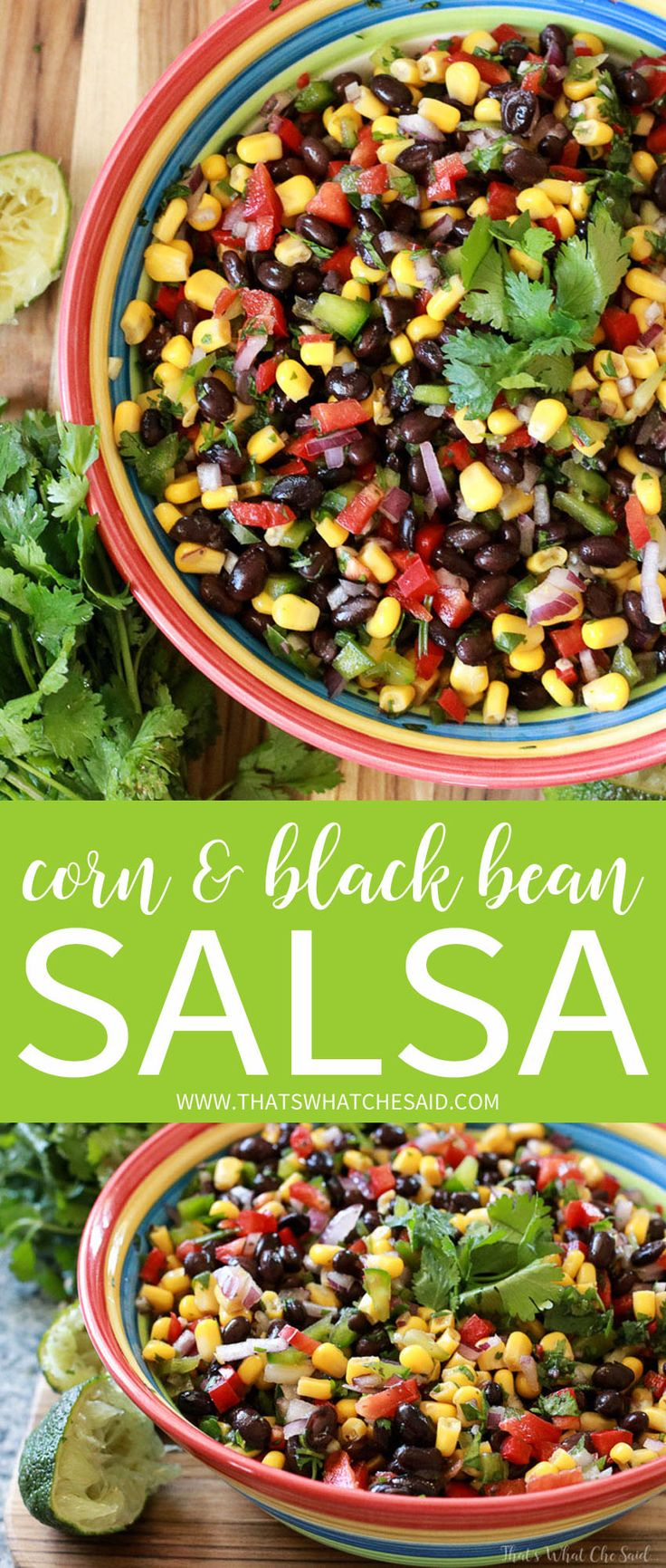 Easy Corn & Black Bean Salsa Recipe. Perfect for Picnics and Summer fun because it can sit out with no worries!