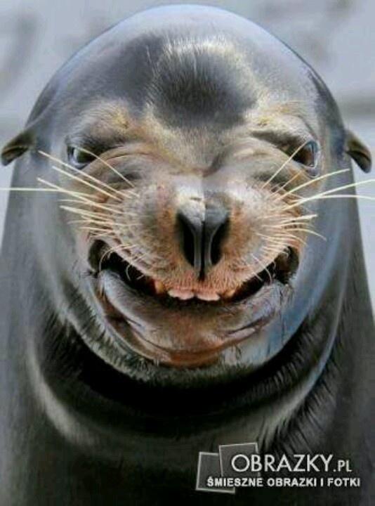 Lächeln?