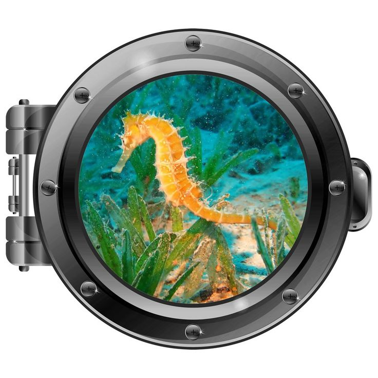 Take a peek into the vast depths of the ocean through his wall decal from the Maker's Market.