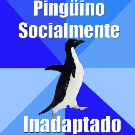 Si te encuentras en ese lugar incómodo entre adolescente y hombre; si te sientes como la pieza del rompecabezas que no termina de encajar; si eres una paria social...no hay duda que te sentirás identificado con este desdichado pingüino y las situaciones embarazosas que debe soportar. #amigos #bromas #chistes #consejos #divertido #frases #inadaptado #incomodo #meme #penguin #pinguino #social #socialmente