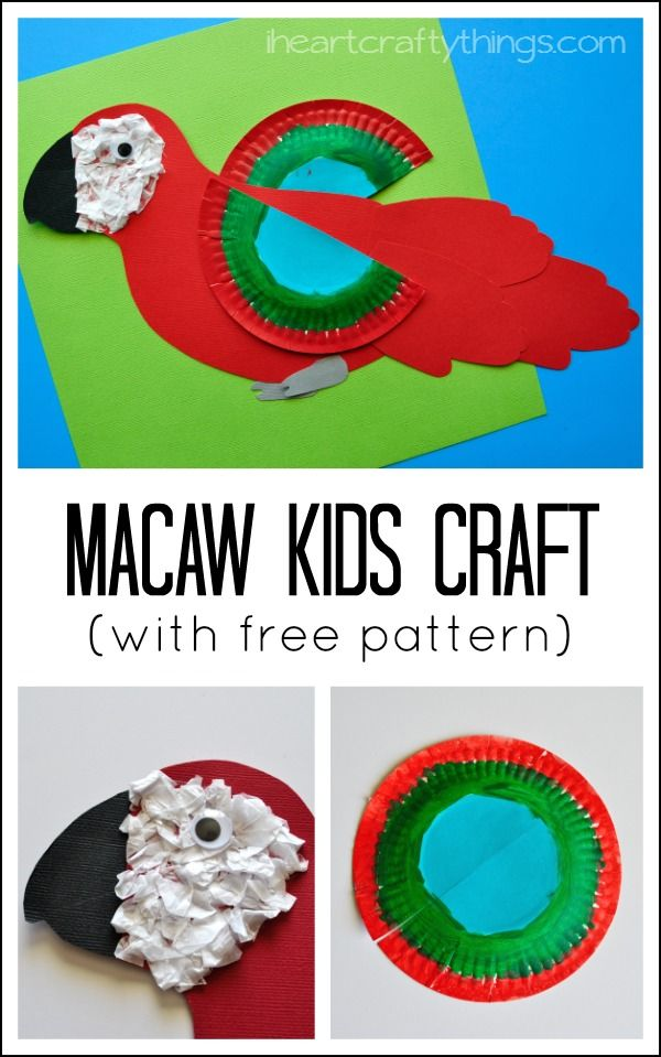 How to Make a Colorful Macaw Craft for Kids. Find a pattern in the post to make this fun kids craft even more simple. Perfect for learning about birds or the rainforest.