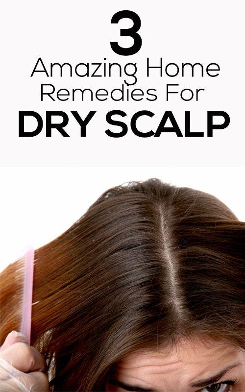 Best Oil For Dry Scalp Natural Hair