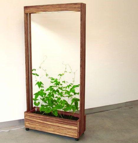 Фасолевый Барьер – оригинальная перегородка для комнаты