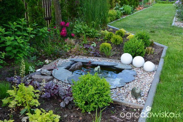 Ogródek Iwony II - strona 243 - Forum ogrodnicze - Ogrodowisko