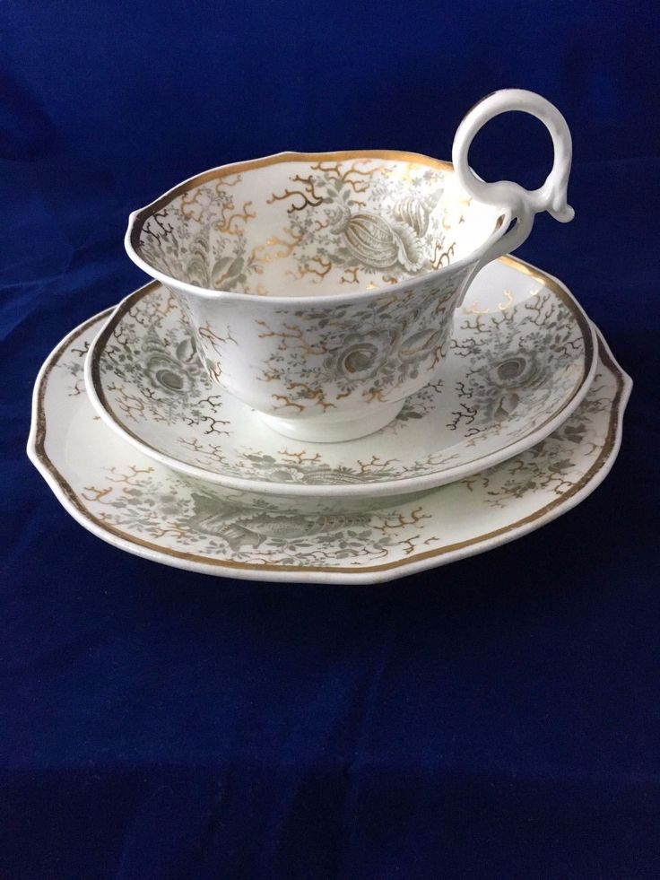 Antique Alcock large breakfast cup, saucer and plate c. 1825. | seashell pattern - see lovers of blue and white website