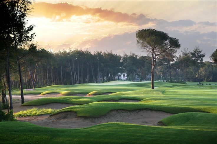 Montgomerie Maxx Royal i Belek, Antalya PAR 72, GRUNDAD 2006 GUL TEE M RÖD TEE M HCP D 36/ H 28 DESIGN  Beläget i 104 hektar pittoresk, blandad tallskog och sandiga åsar, gör att banan har bibehållit den naturliga miljön. Det är en mycket välvårdad, utmanande och ondulerande bana med många strategiska hål. Se fler golfbanor i Turkiet  i Golf Joy travels golfguide  >>http://www.golfjoy.se/Golfbanor_Turkiet.htm