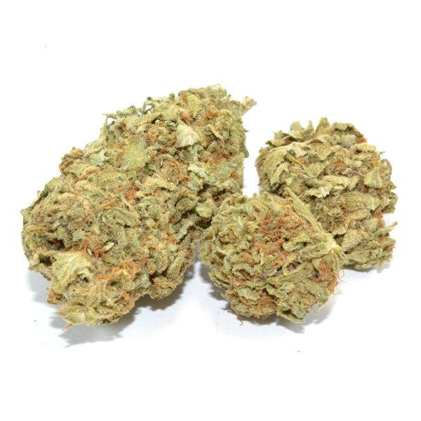 Jamaican Haze is a cross between Jamaican strain and Amnesia Haze strain. Jamaican Haze inherits the qualities from both its parents and delivers the sativa-heavy effects you would expect from the unity of both strains.