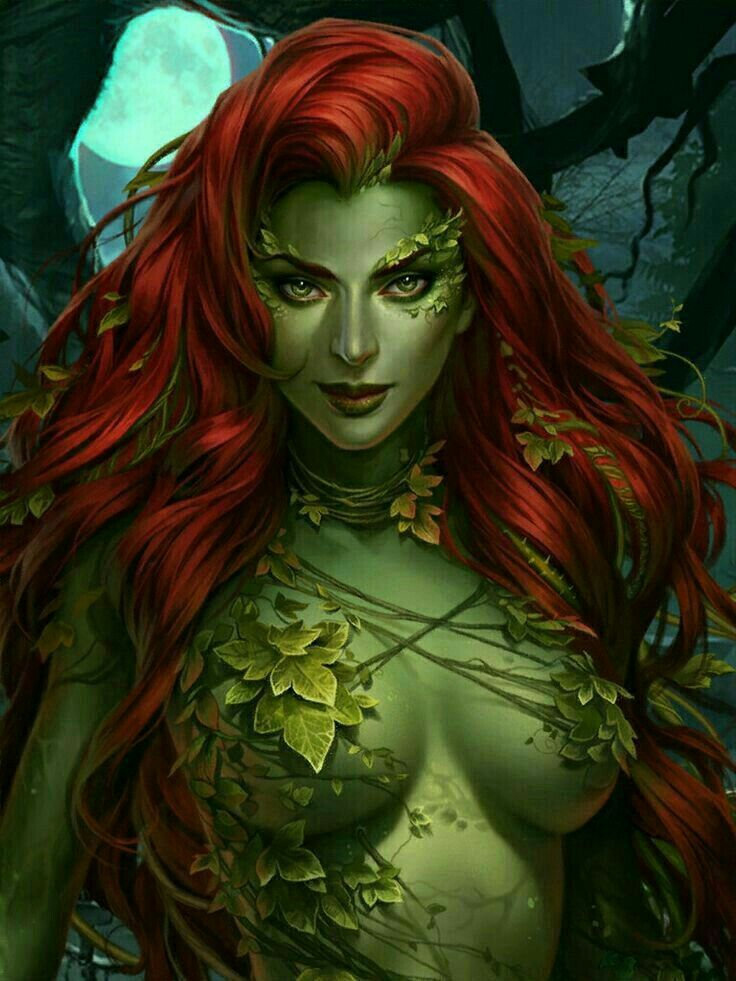 The Seductive And Very Vicious Sexy Poison Ivy Dc -1297