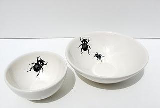 karoo inspired dung beetle motif