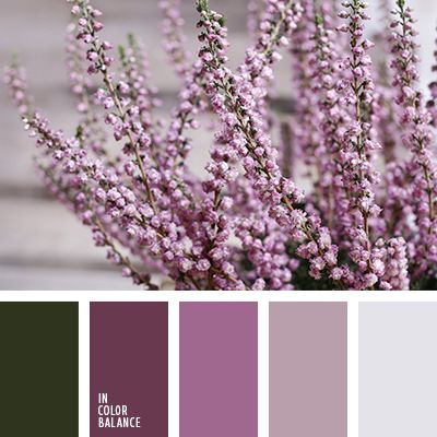 зеленый и салатовый, зеленый и фиолетовый, оттенки салатового, оттенки фиолетового, салатовый и зеленый, салатовый и фиолетовый, сиреневый и салатовый, сиреневый и темно-фиолетовый, темно-салатовый, темно-фиолетовый, темно-