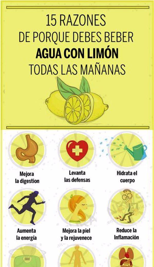 Los beneficios de tomar agua con limón en ayunas dependen del perfil nutricional de este conocido cítrico. El limón es rico en vitamina C, un nutriente que por si solo tiene miles de funciones en el cuerpo y que por tanto tiene numerosos efectos positivos. De hecho, una deficiencia de esta vitamina podría causar problemas …