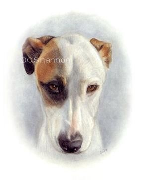 Honoring Hope 3 day event! Ends Sunday at midnight. Purchase a hand drawn portrait of your dog or cat and Now 20 dollars from each purchase goes to the rescue animals at Paws for Hope & Faith in Georgia. Order here www.cshannon.ca and tell your pet lover friends